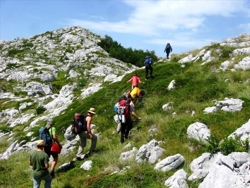 Walking tours - hiking